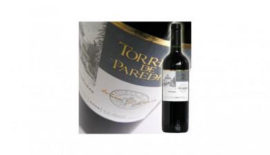 2009 Torreon de Paredes Carmenere