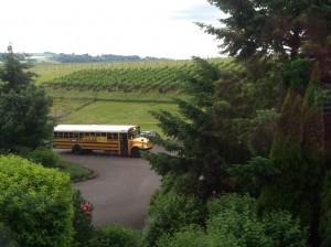 Oregon Pinot Camp