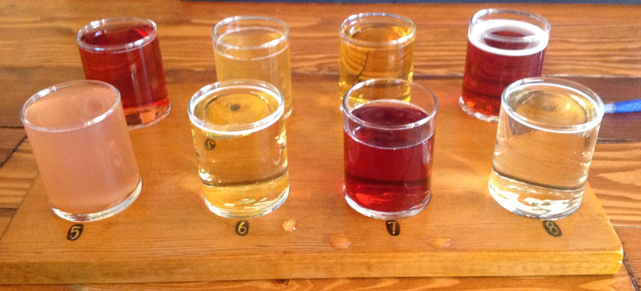 Exploring the world of hard cider<span class=