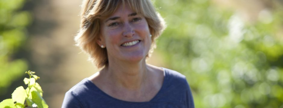 Why Wine? An interview with Denise Shurtleff of Cambria Winery